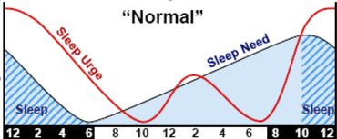 Sleep and Awake Cycles